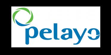 pelayo car insurance spain